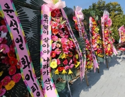 [데스크 칼럼]국감장에서 '식물총장'이라 말한 윤석열 총장 반격 의미 '난세영웅'